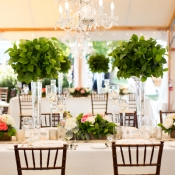 Greenery Topiary Centerpieces