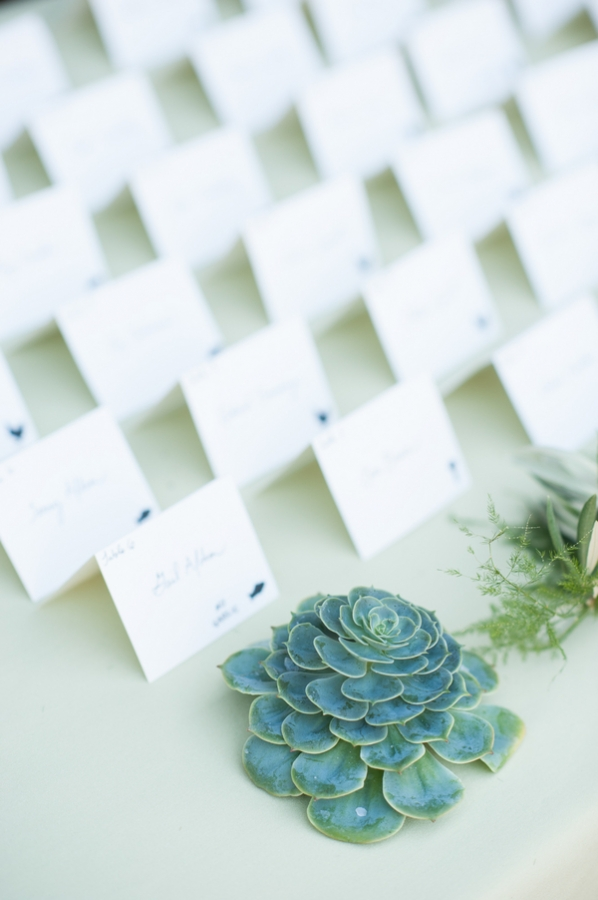 Succulents on Place Card Table