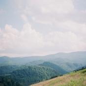 Tennessee Vineyard View