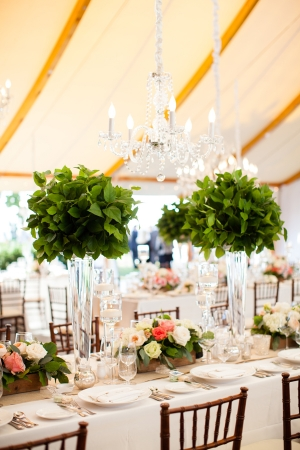 Topiary Centerpieces with Greenery