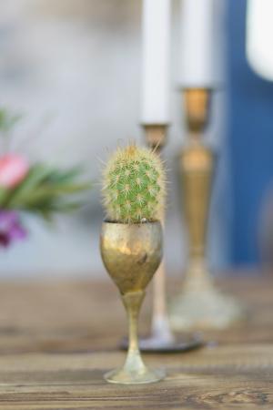 Cactus in Gold Goblet