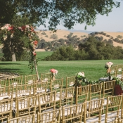 Wedding Ceremony in Vineyard