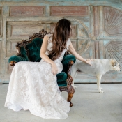 Inspiration for Dogs in Weddings