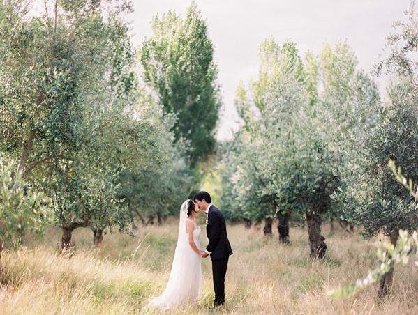 Olive Tree Wedding Kiss