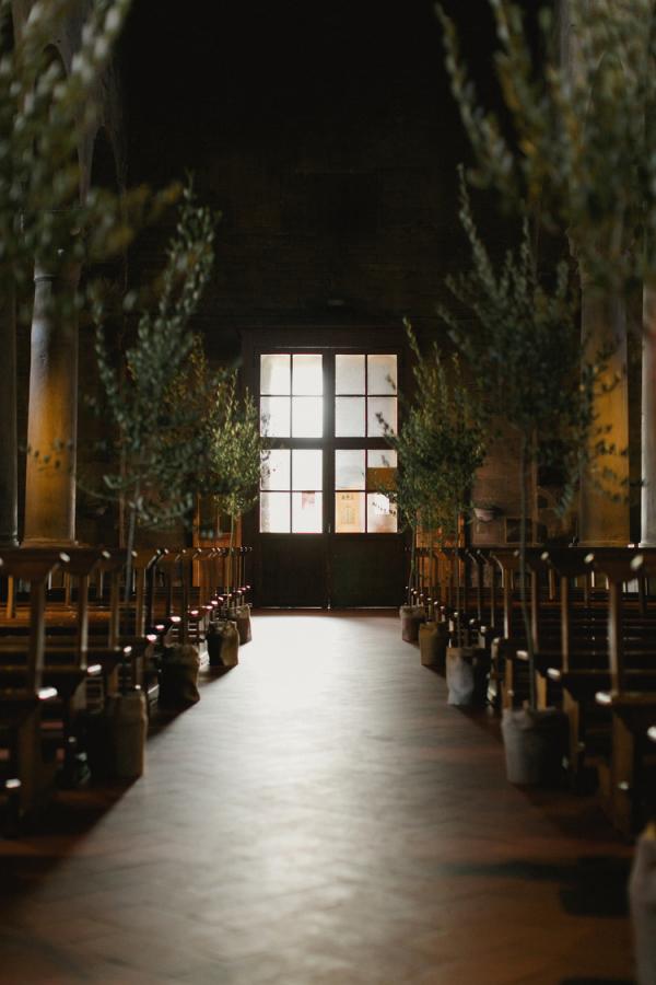 Olive Trees Wedding Decor Elizabeth Anne Designs The Wedding Blog