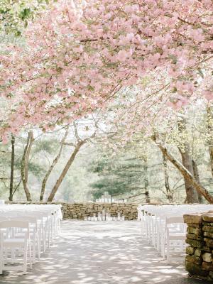 Cherry Blossom Wedding