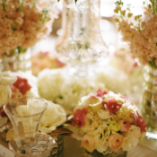 Elegant Pink and White Flowers