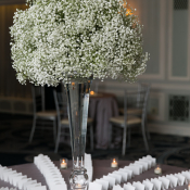 Escort Card Table with Babys Breath