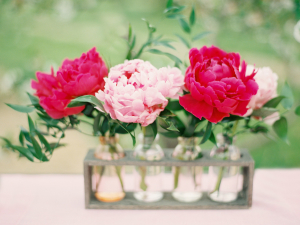 Fuchsia and Pink Peonies