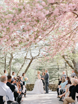Outdoor Ceremony Under Cherry Blossom Trees