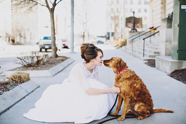 Bride and Dog Photo Ideas