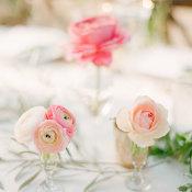 Pink Flowers in Bud Vases