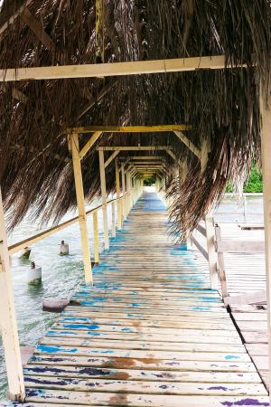 Bridge in Martinique