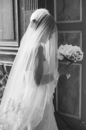 Elegant French Bride
