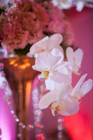 Centerpiece with Hanging Orchids