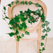 Ivy on Wedding Chair