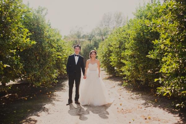 Hartley Botanica Wedding Sloan Photographers