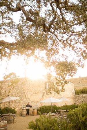 Sunstone Winery Wedding 5