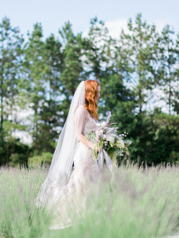 Bridal Photos in Lavender Field