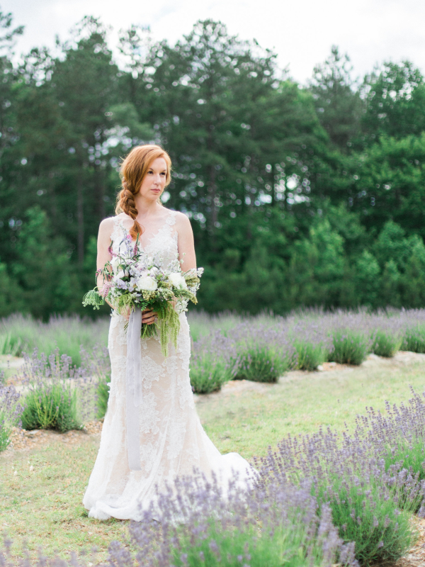 Bride Surrounded by Lavender