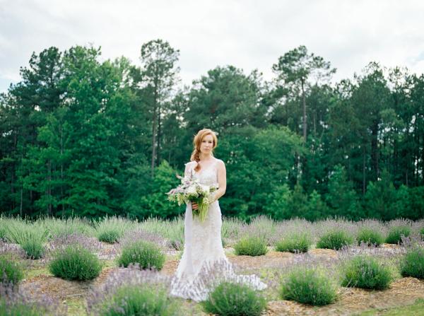 Bride on Lavender Farm