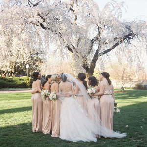 Bridesmaids Under the Cherry Blossoms