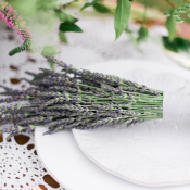 Lavender on Place Setting