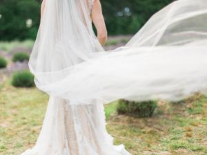 Veil in Wind