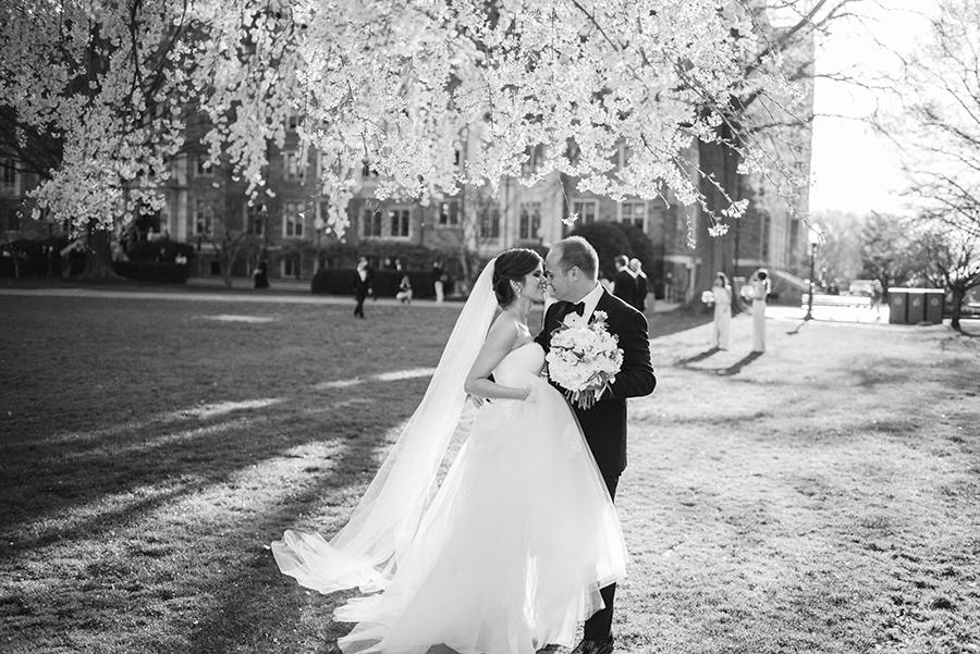Wedding Portraits Under the Cherry Blossoms