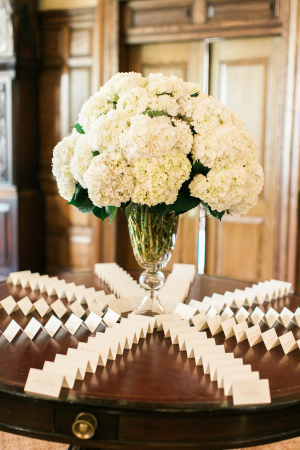 Escort Card Table with Hydrangea