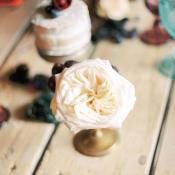 Blush Bud in Gold Vase