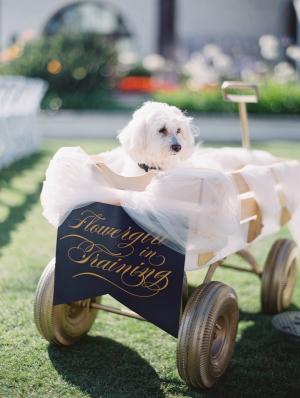 Dog Flower Girl in Wagon