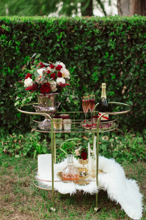 Bar Cart with Burgundy and Gold Accents