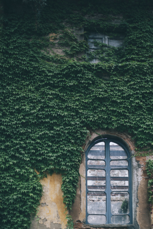 Villa Di Corliano Wedding 7