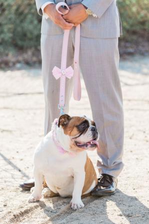 Dog Flower Girl