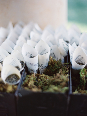 Dried Lavender Toss Cones