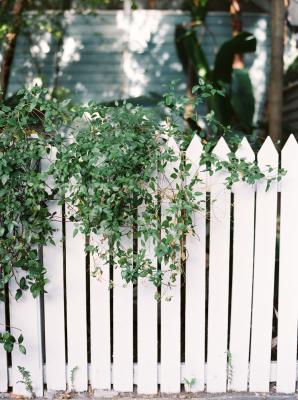 Fence at Hemingway Home