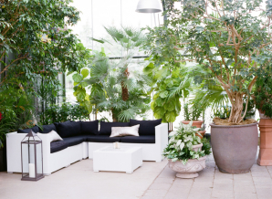 Lounge Area in Wedding Greenhouse