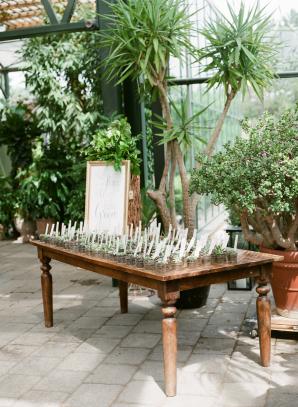 Succulent Escort Card Table