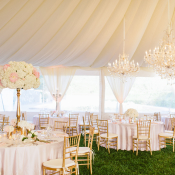 Blush Tent Reception