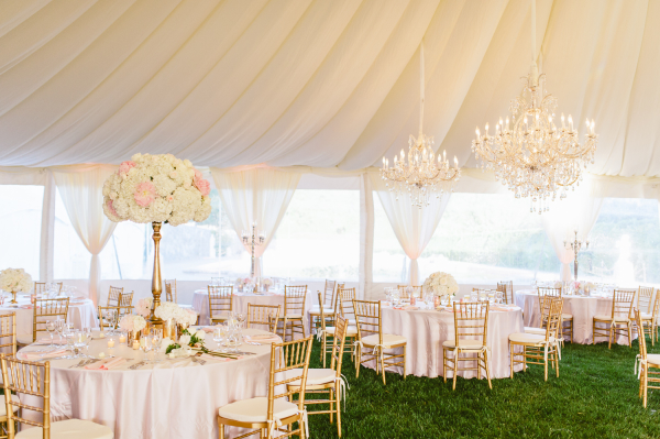Blush Tent Reception