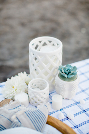 White Vases with Succulents