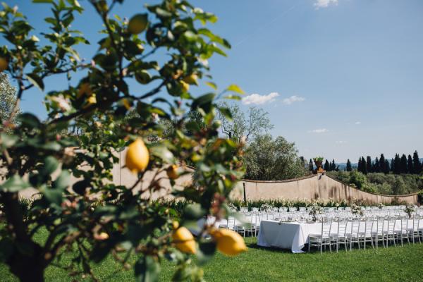Wedding in Lemon Orchard