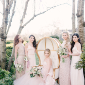 Blush Bridal Party