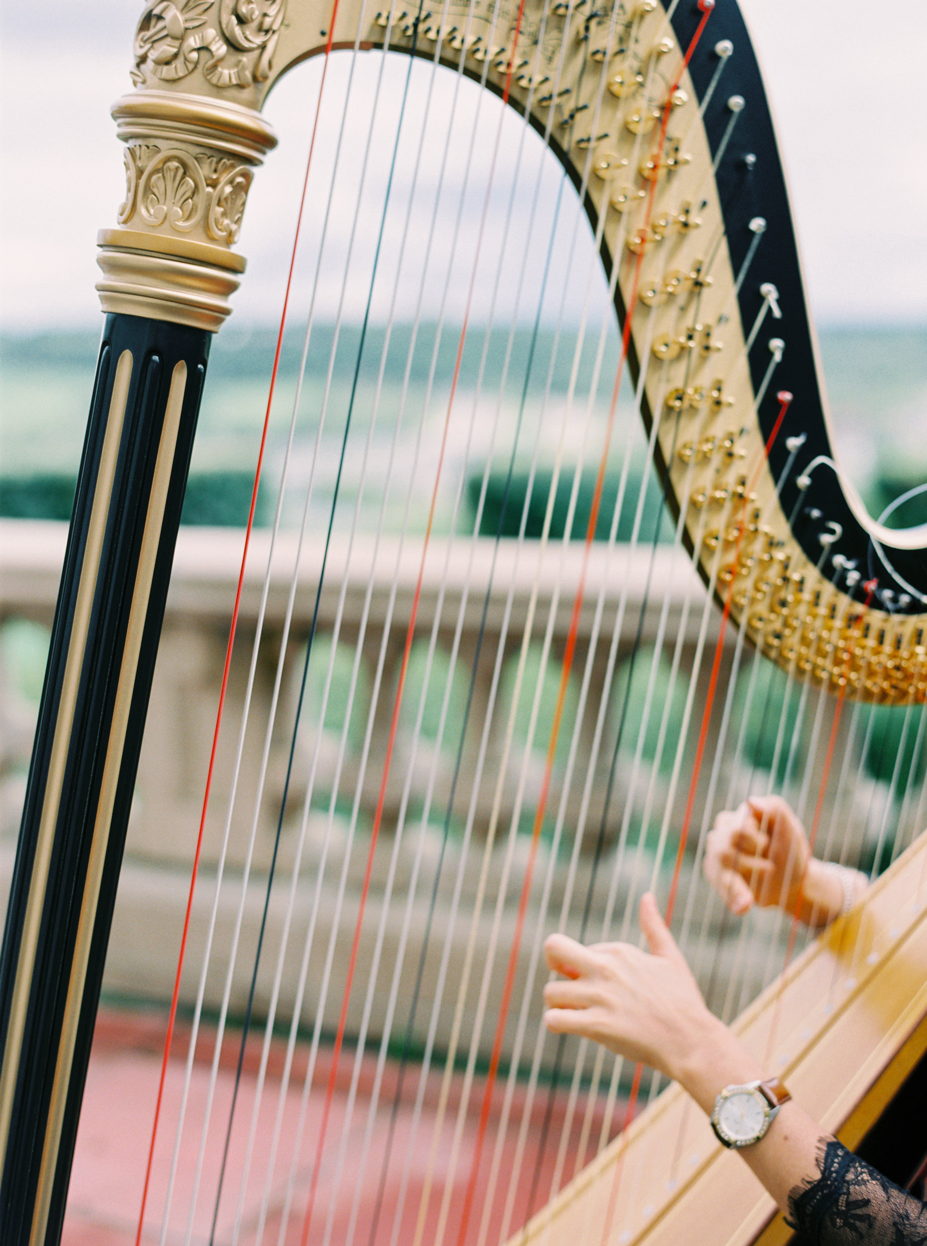 Harp At Wedding Ceremony