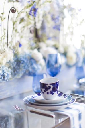 Blue and White Modern Wedding Ideas