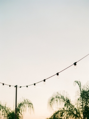 String Lights for Outdoor Wedding