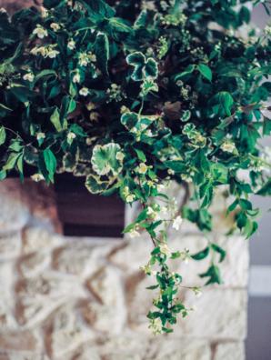 Garden Wedding Inspiration Honey Gem Creative 8