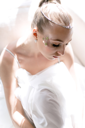 Celestial Bride Davids Bridal