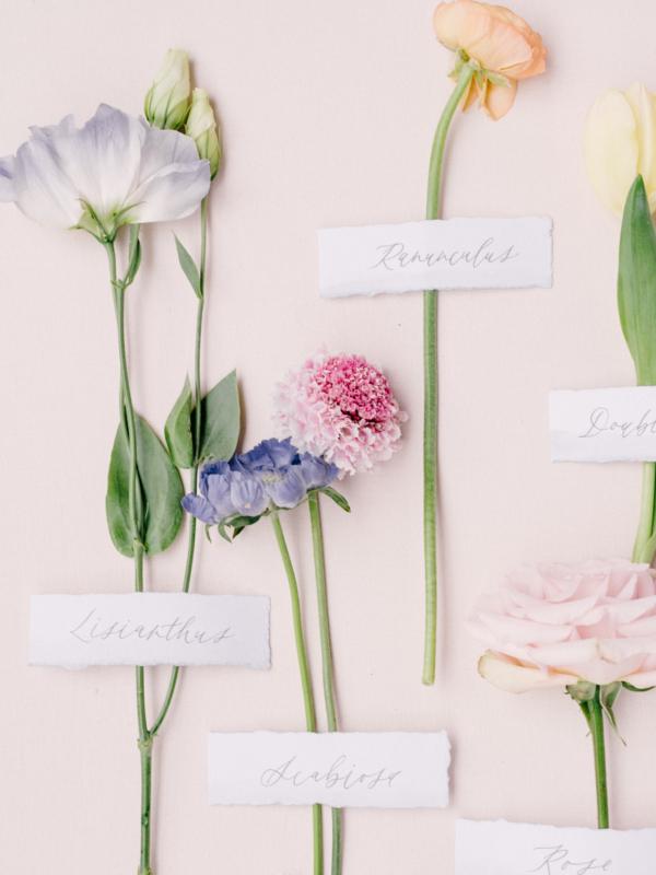 Spring Wedding Blooms